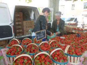 Fête fraise 2014-8