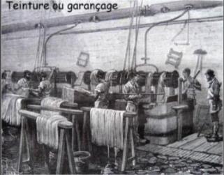 Garance 10