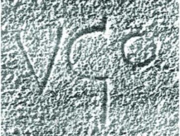 signature Vgo